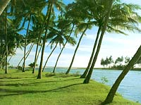 kerala-backwater.jpg